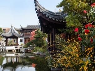 spring-lan-su-blooms-graybox__page-header-gallery
